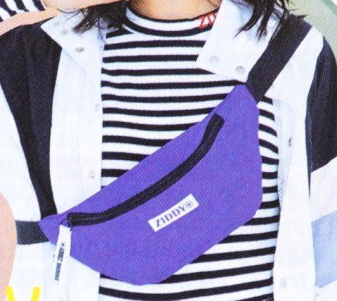 【次号予告】ニコ☆プチ 2020年4月号《特別付録》ZIDDY(ジディー)ウエストポーチ